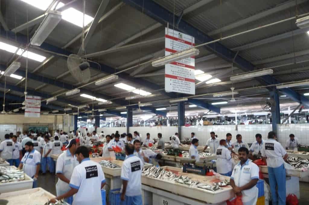 Dubai in 24 ore - fish market