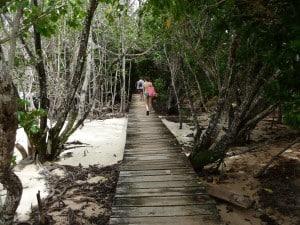 seychelles racconto di viaggio