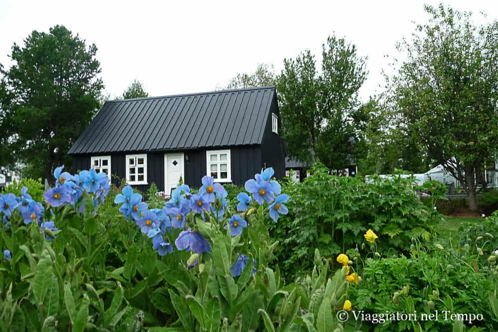 Islanda Godafoss Akureyri fiordi del Nord