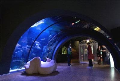 Milano: musei gratuiti la prima domenica del mese - Acquario Civico