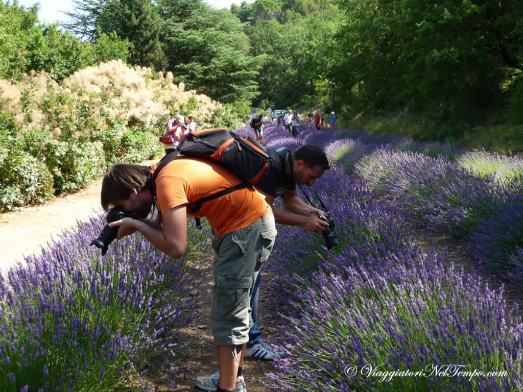 Provenza - Abbazia di Senanque - fotografi in erba