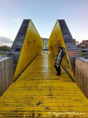 Visita Rotterdam LUCHTSINGEL BRIDGE