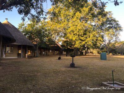 Kruger National Park - Prestoriuskop