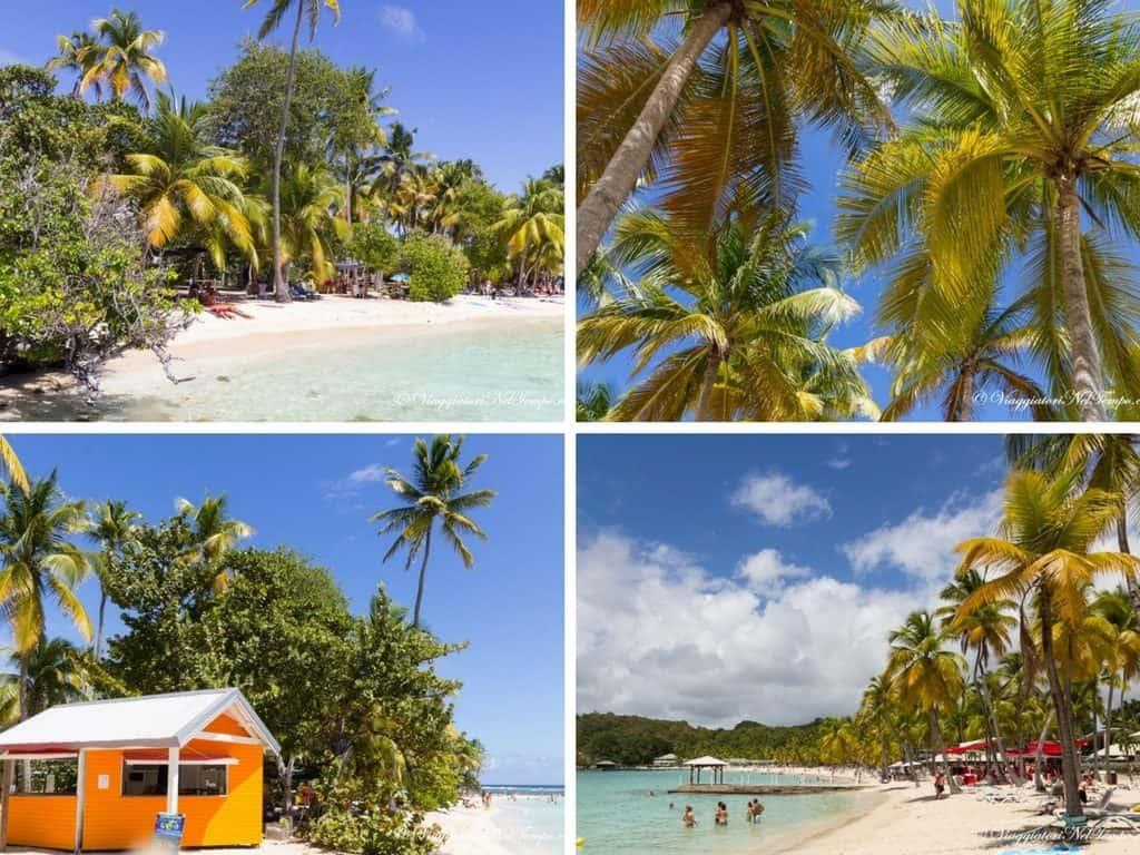 Guadalupe escursione fai da te crociera ai Caraibi