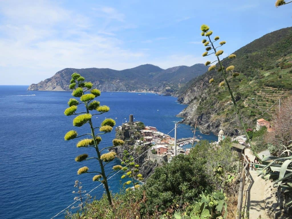 The Cinque Terre - View over Vernazza from the hiking trail with its signature agaves